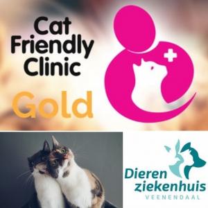 Cat friendly dierenarts Veenendaal